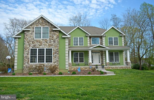 174 Riverside Drive, ELKTON, MD 21921 (#MDCC163584) :: ExecuHome Realty