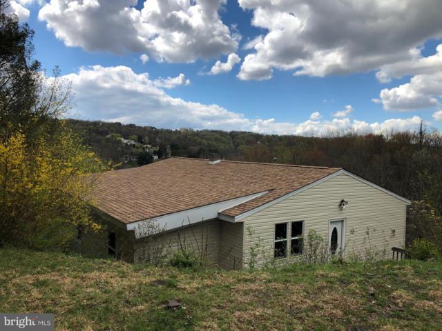 913 Wynonah Drive, AUBURN, PA 17922 (#PASK125334) :: Remax Preferred | Scott Kompa Group