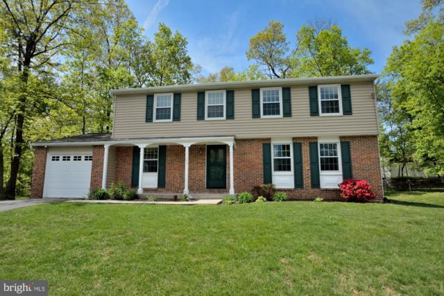 103 Juneberry Court, STERLING, VA 20164 (#VALO381478) :: The Redux Group