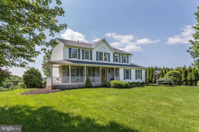 5295 Mussetter Road, IJAMSVILLE, MD 21754 (#MDFR245022) :: ExecuHome Realty