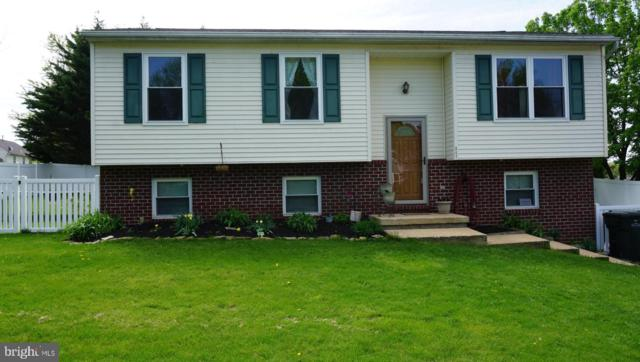 347 Pine Valley Drive, FELTON, PA 17322 (#PAYK115366) :: Teampete Realty Services, Inc
