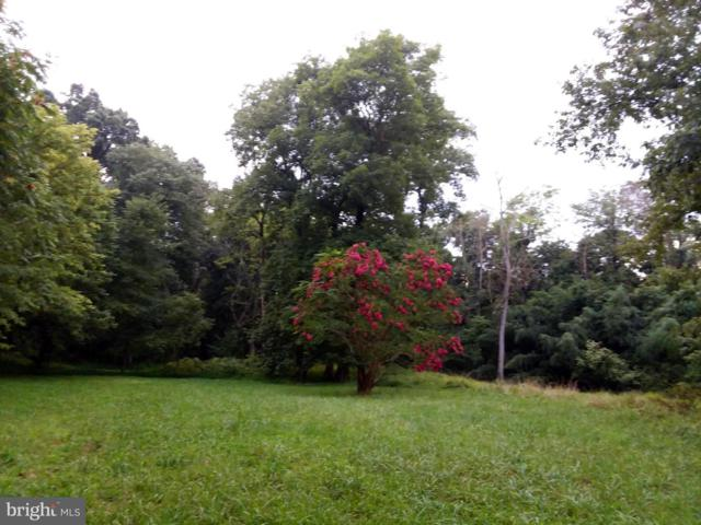 Whitings Neck Road, MARTINSBURG, WV 25405 (#WVBE167188) :: AJ Team Realty