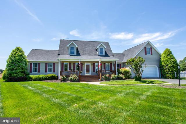 5656 Hawkeye Road, EAST NEW MARKET, MD 21631 (#MDDO123460) :: Advance Realty Bel Air, Inc