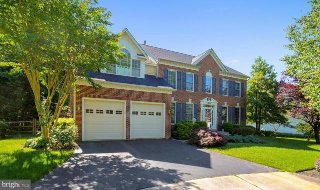 19209 Honeystone Place, BROOKEVILLE, MD 20833 (#MDMC656336) :: Circadian Realty Group