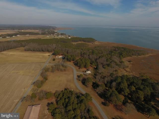 Tanhouse Road Lot 5, SNOW HILL, MD 21863 (#MDWO105950) :: Bruce & Tanya and Associates