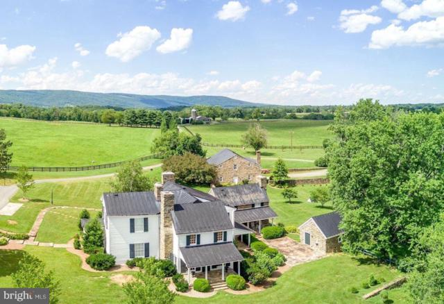 9092 John Mosby Highway, UPPERVILLE, VA 20184 (#VALO383302) :: RE/MAX Plus