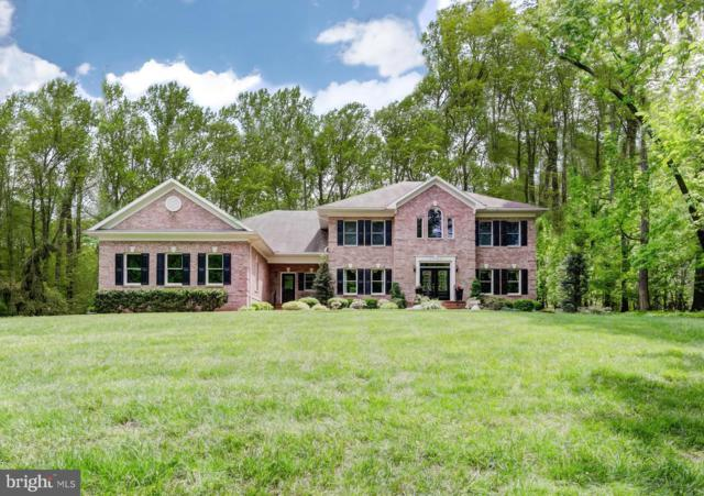 2513 Chestnut Woods Court, REISTERSTOWN, MD 21136 (#MDBC457308) :: ExecuHome Realty