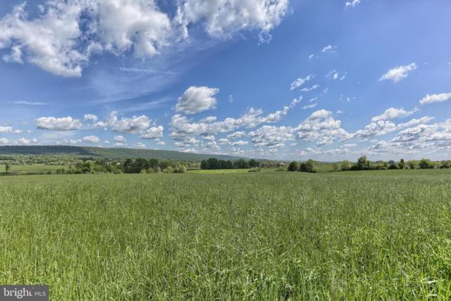 0 N Fairlane Road Lot 2, GRANTVILLE, PA 17028 (#PADA110246) :: The Heather Neidlinger Team With Berkshire Hathaway HomeServices Homesale Realty