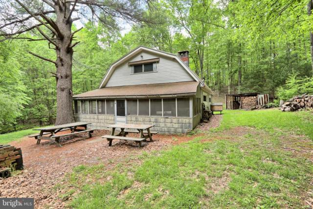 4741E Back Road, HALIFAX, PA 17032 (#PADA110388) :: The Heather Neidlinger Team With Berkshire Hathaway HomeServices Homesale Realty