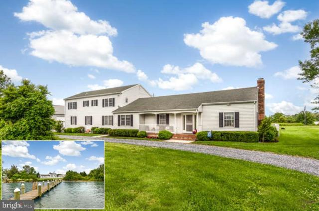 6206 Castle Haven Road, CAMBRIDGE, MD 21613 (#MDDO123604) :: Blue Key Real Estate Sales Team