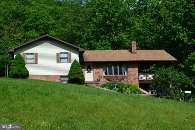 368 Buttercup Drive, MATHIAS, WV 26812 (#WVHD105124) :: Bruce & Tanya and Associates