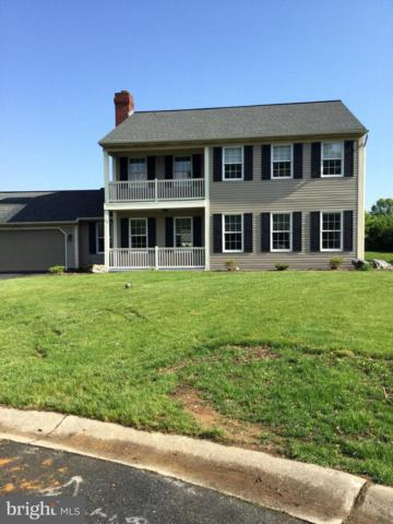 113 Sunflower Circle, LANDISVILLE, PA 17538 (#PALA132770) :: Younger Realty Group