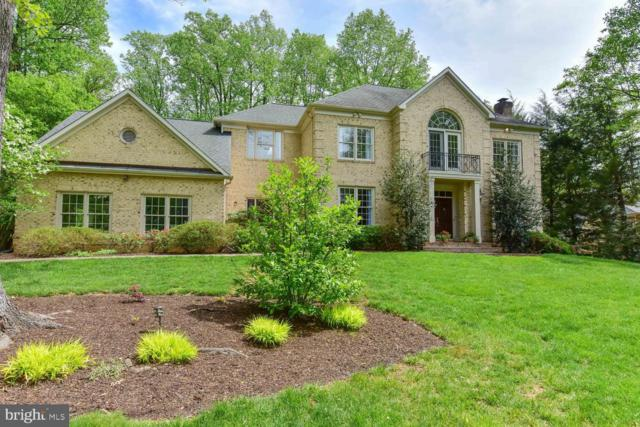 10650 Chadwell Court, GREAT FALLS, VA 22066 (#VAFX1062750) :: The Putnam Group