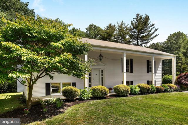 21 Clearwater Court, DAMASCUS, MD 20872 (#MDMC659362) :: ExecuHome Realty