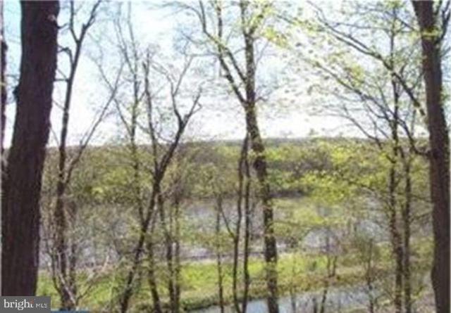 00 River Road, ERWINNA, PA 18920 (#PABU469108) :: LoCoMusings