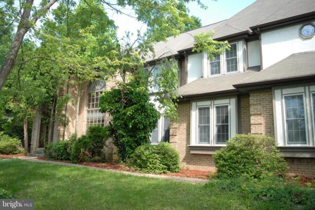 12664 Braddock Farms Court, CLIFTON, VA 20124 (#VAFX1063088) :: The Piano Home Group