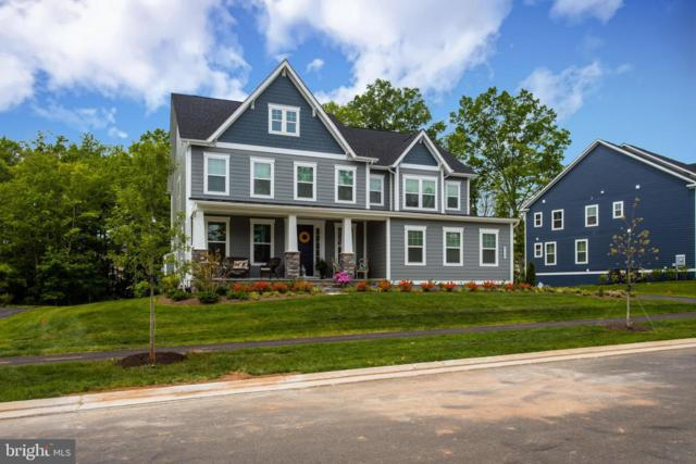 41175 Chatham Green Circle, ALDIE, VA 20105 (#VALO384558) :: ExecuHome Realty