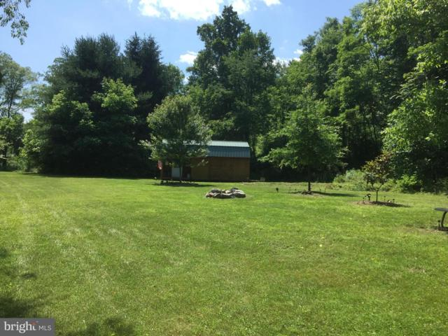 Off B O, Low Line Rd., GREAT CACAPON, WV 25422 (#WVMO115344) :: Gail Nyman Group