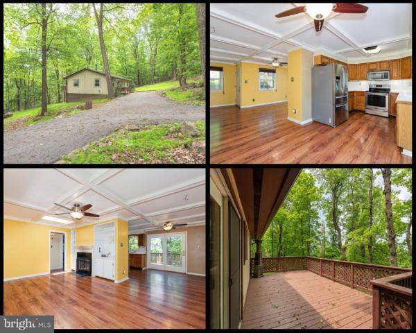 99 Alpine Drive, FRONT ROYAL, VA 22630 (#VAWR136844) :: Jacobs & Co. Real Estate