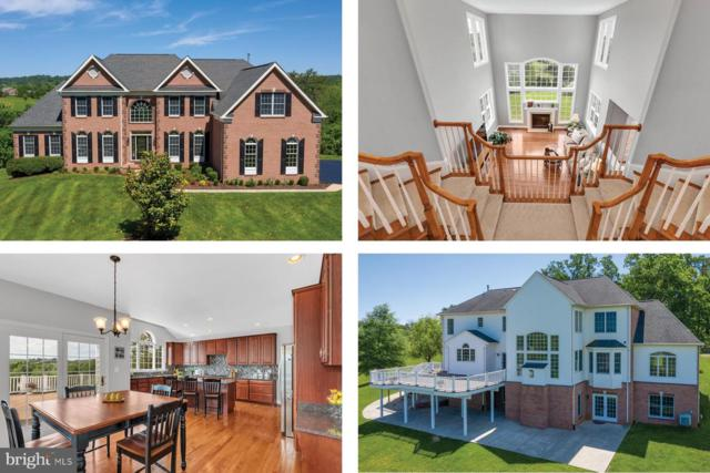 18131 Perthshire Court, LEESBURG, VA 20175 (#VALO384918) :: ExecuHome Realty