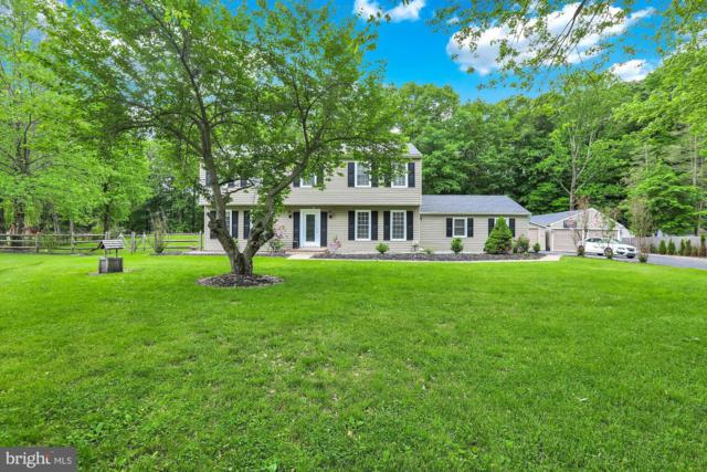 6486 Deerfield Drive, SOLEBURY, PA 18963 (#PABU469624) :: Linda Dale Real Estate Experts