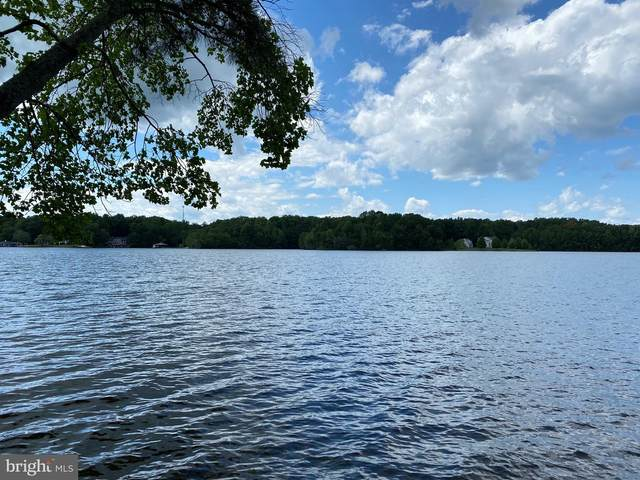 Jerdone Island Drive, BUMPASS, VA 23024 (#VALA119226) :: Debbie Dogrul Associates - Long and Foster Real Estate