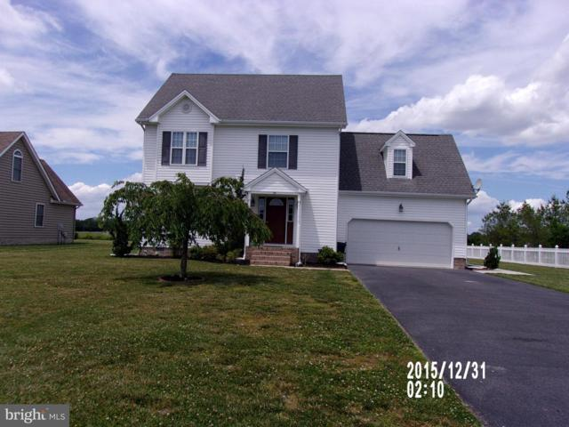 126 Nina Lane, FRUITLAND, MD 21826 (#MDWC103550) :: Dart Homes