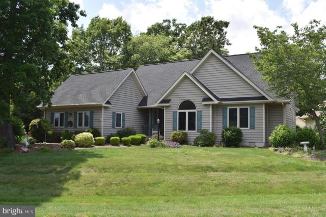 34804 Carriage Court, DAGSBORO, DE 19939 (#DESU141506) :: The Allison Stine Team