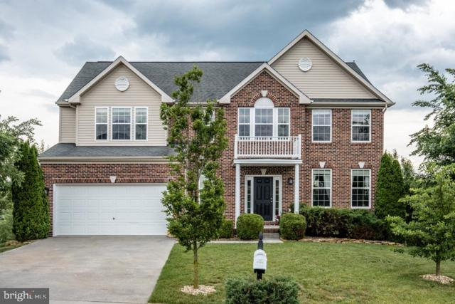 169 Buchanan Drive, BROADWAY, VA 22815 (#VARO100848) :: The Redux Group