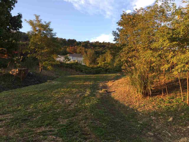 505 Halyard Way, ENOLA, PA 17025 (#PACB113990) :: Jim Bass Group of Real Estate Teams, LLC