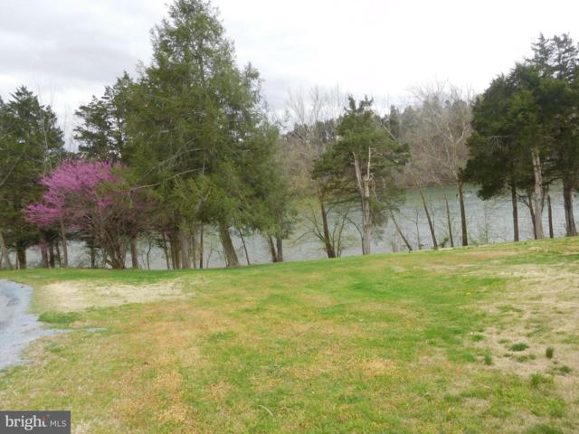 Riverside Drive, LURAY, VA 22835 (#VAPA104506) :: The Maryland Group of Long & Foster Real Estate