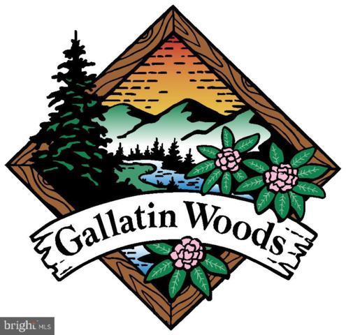 6 Gallatin Spur, OAKLAND, MD 21550 (#MDGA130698) :: AJ Team Realty