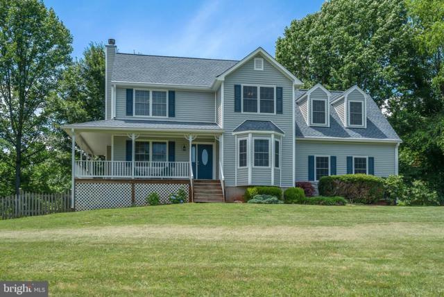 14100 Westwind Lane, CULPEPER, VA 22701 (#VACU138630) :: Great Falls Great Homes