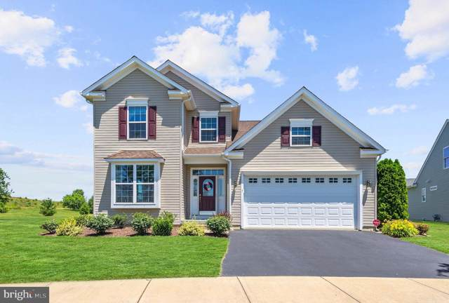 7 Palisade Circle, MIDDLETOWN, DE 19709 (#DENC480210) :: Brandon Brittingham's Team