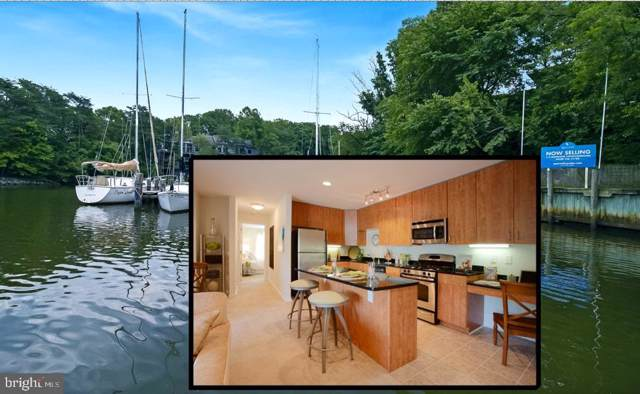 1113 Primrose Court #303, ANNAPOLIS, MD 21403 (#MDAA402884) :: Pearson Smith Realty