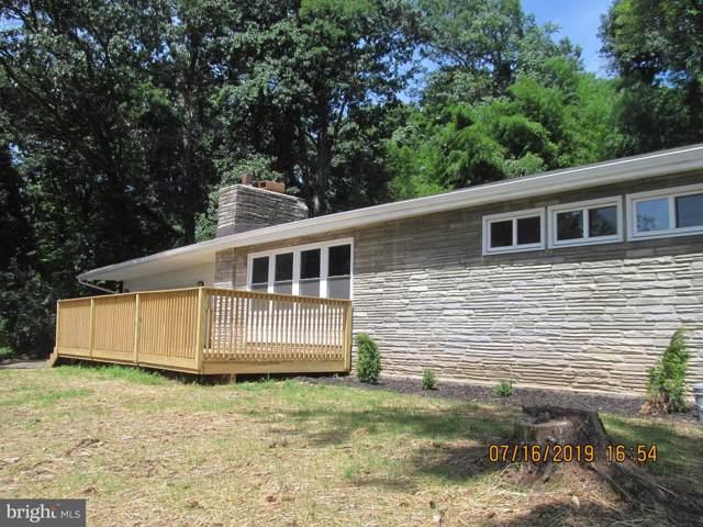 928 Belle Vista Drive, ENOLA, PA 17025 (#PACB114162) :: The Joy Daniels Real Estate Group