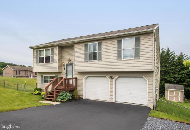 5 Diane Court, YORK HAVEN, PA 17370 (#PAYK118626) :: The Jim Powers Team