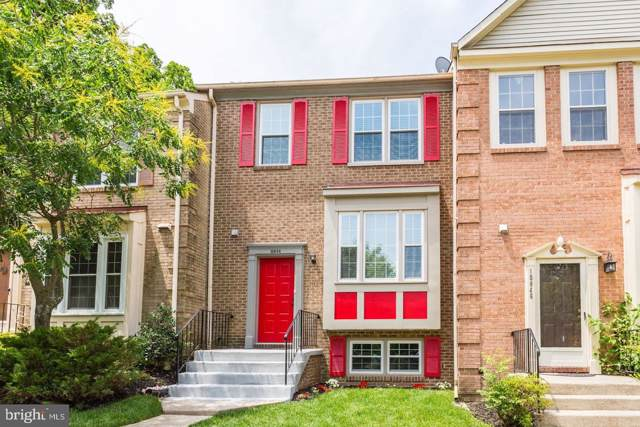 10844 Douglas Avenue, SILVER SPRING, MD 20902 (#MDMC663960) :: Browning Homes Group