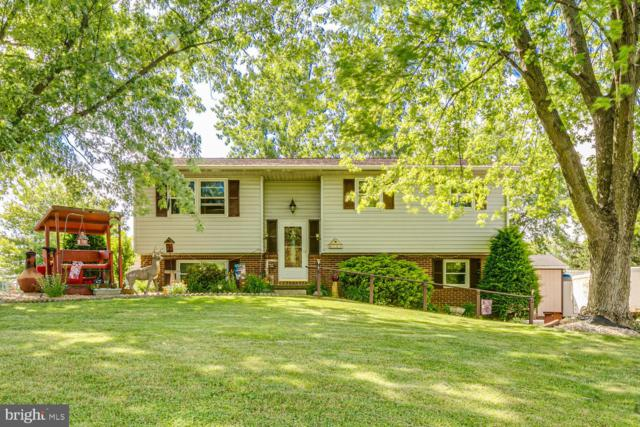 161 Schoolhouse Road, PALMYRA, PA 17078 (#PALN107456) :: The Joy Daniels Real Estate Group