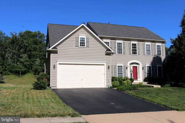 25578 Mindful Court, ALDIE, VA 20105 (#VALO387090) :: The Miller Team