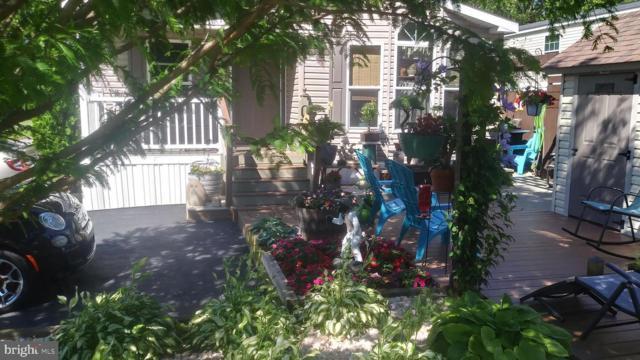 58 Chipawa Avenue, DOVER, PA 17315 (#PAYK118948) :: The Jim Powers Team