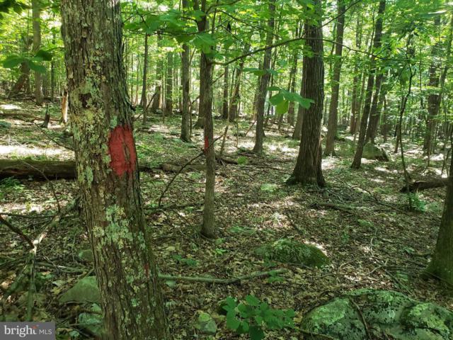 Lot 7 Forest Edge Estates, WARDENSVILLE, WV 26851 (#WVHD105222) :: LoCoMusings