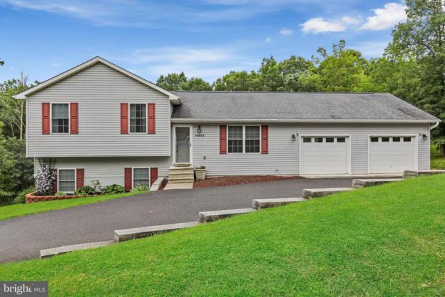 16802 Mountain Club Avenue, RAWLINGS, MD 21557 (#MDAL131984) :: Keller Williams Pat Hiban Real Estate Group
