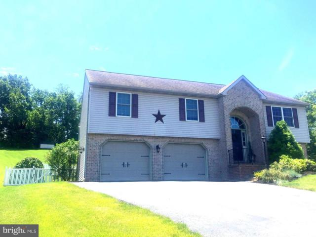 720 Fairview Road, MOUNT JOY, PA 17552 (#PALA134772) :: The Joy Daniels Real Estate Group
