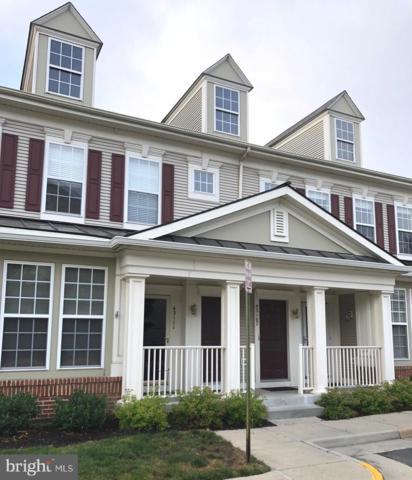 43107 Old Gallivan Terrace, ASHBURN, VA 20147 (#VALO387524) :: Cristina Dougherty & Associates