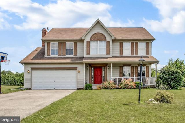 141 W Summit Drive, LITTLESTOWN, PA 17340 (#PAAD107478) :: The Joy Daniels Real Estate Group