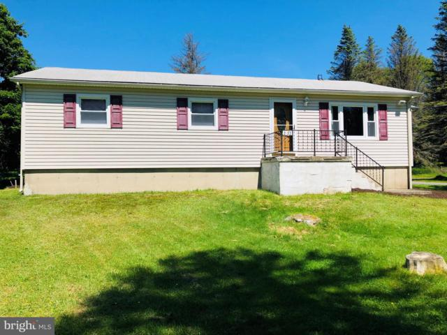 2133 Lakeside Drive, TOBYHANNA, PA 18466 (#PAMR104626) :: ExecuHome Realty