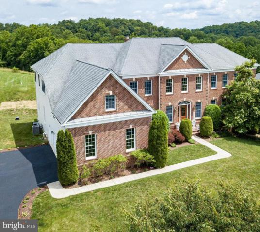 15909 Willis Way, WOODBINE, MD 21797 (#MDHW266082) :: Eng Garcia Grant & Co.