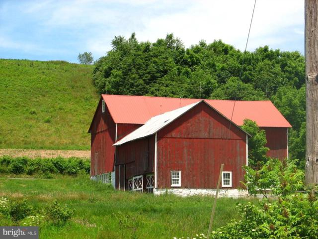 58 Clearview Crossing, TAMAQUA, PA 18252 (#PASK126482) :: The Joy Daniels Real Estate Group