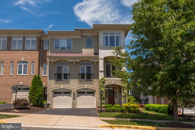 43586 Purple Aster Terrace, LEESBURG, VA 20176 (#VALO388150) :: The Greg Wells Team